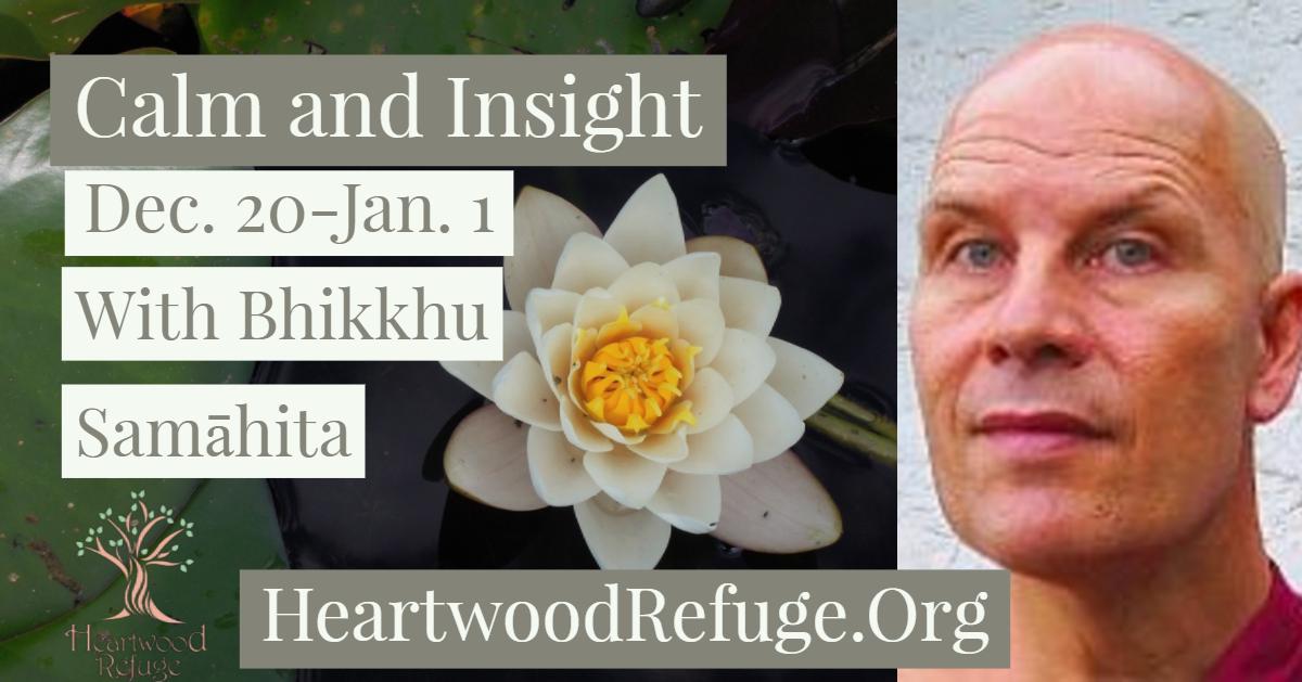 Heartwood Refuge